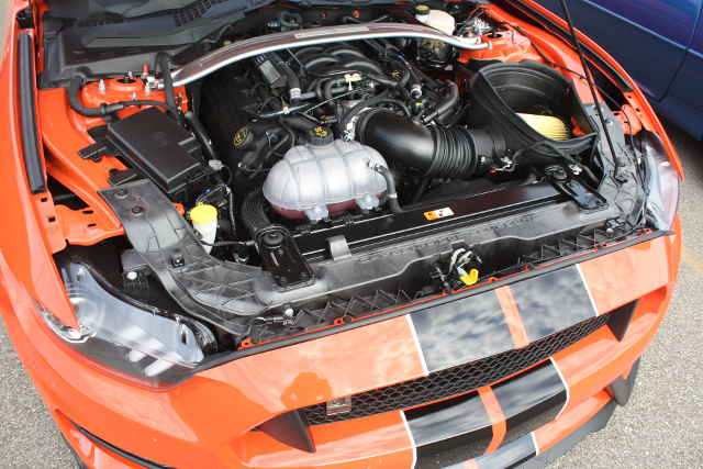 picture of Mustang engine